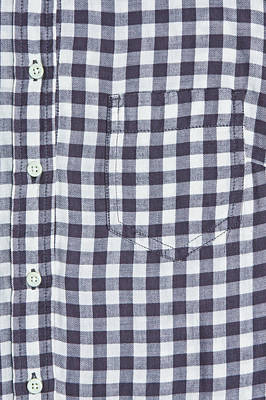 Gingham Photograph - Blouse Front by Tom Gowanlock