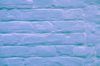 Blue Brick Wall Art Print by Tom Gowanlock