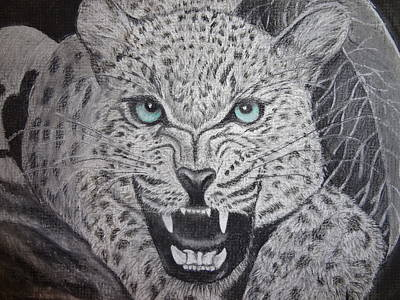 Blue Eyed Liger Art Print by Trishia Peterson