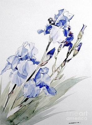 Painting - Blue Irises by Greta Corens