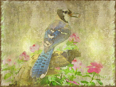 Blue Jay With Texture Print by Debbie Portwood