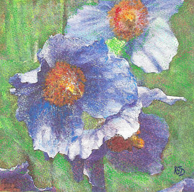 Painting - Blue Poppies by Richard James Digance
