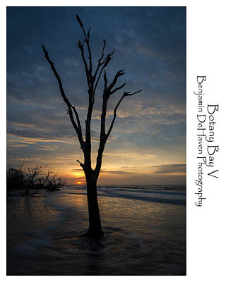 Botany Bay Photograph - Botany Bay V by Benjamin DeHaven