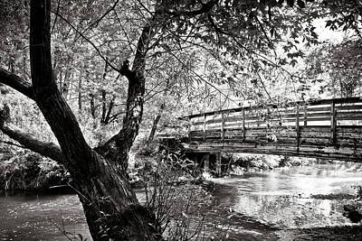 Bridge At Ellison Park Art Print