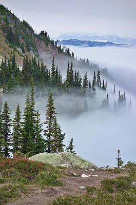 Freedmen Photograph - British Columbia, Whistler by Matt Freedman