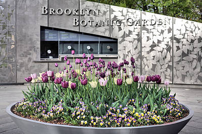 Photograph - Brooklyn Botanical Garden by JC Findley