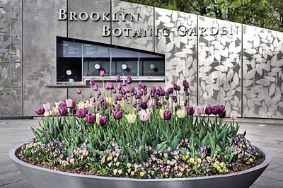 Brooklyn Botanical Garden Art Print
