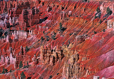 Photograph - Bryce Canyon 2 - Sunset Point by Allen Beatty