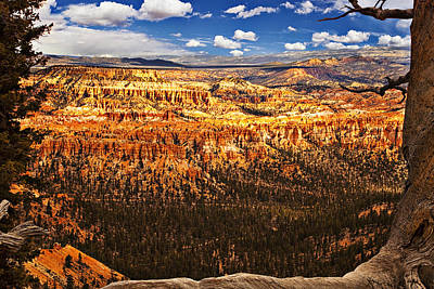 Cloud Photograph - Bryce Canyon by Andrew Soundarajan