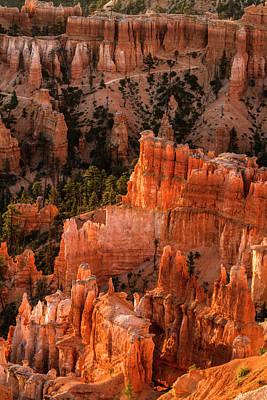 Bryce Canyon National Park, Utah Art Print