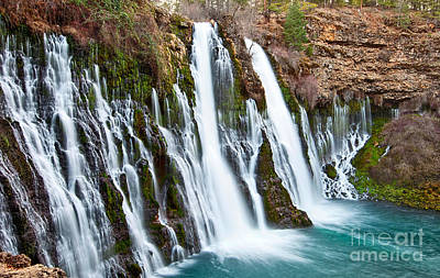 Animal Watercolors Juan Bosco - Burney Falls is one of the most beautiful waterfalls in California by Jamie Pham