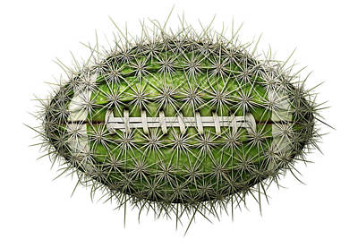 Digital Art - Cactus Football by James Larkin