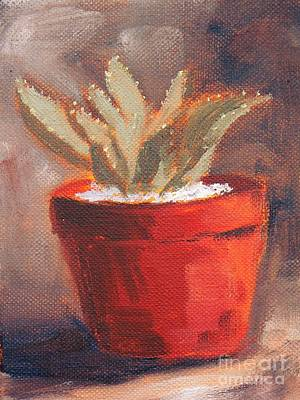 South African Artist Painting - Cactus  by Marietjie Du Toit