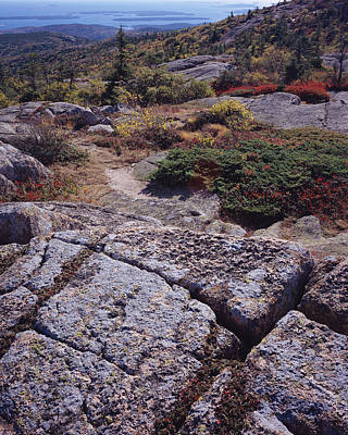 Photograph - Cadillac Mountain by Tom Daniel