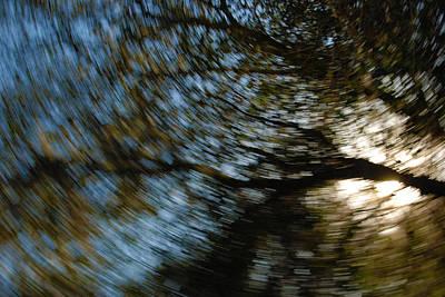 Photograph - Camera Toss by Larah McElroy