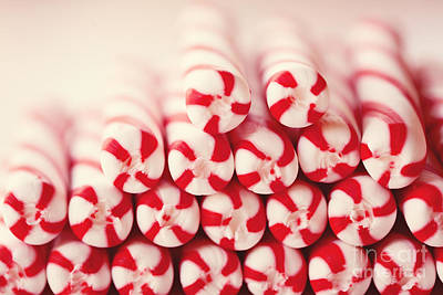 Photograph - Candy Canes by Kim Fearheiley