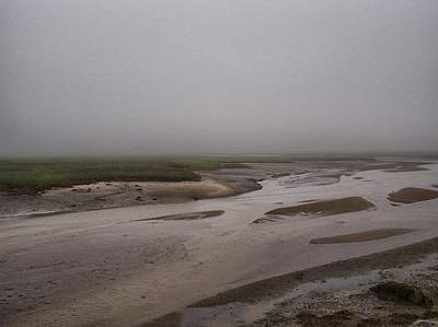 Photograph - Cape Cod Marsh by Pamela Hodgdon