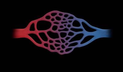 Capillary Network Print by Mikkel Juul Jensen