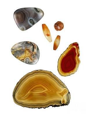 Carnelian Photograph - Carnelian Agate by Paul Biddle