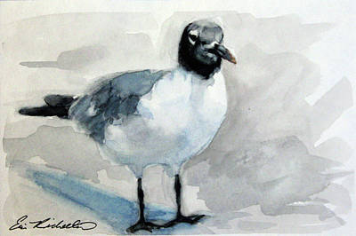 Painting - Carolina Seagull by Erin Rickelton