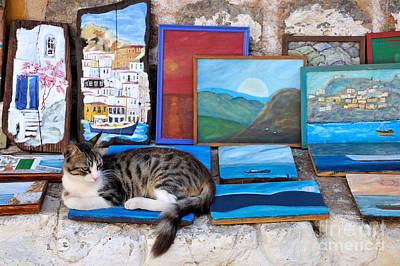 Photograph - Artist Cat by George Atsametakis