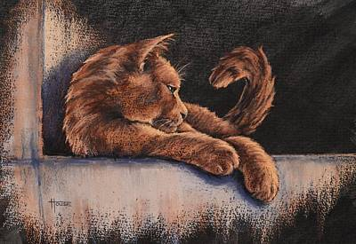 Catching The Last Rays Art Print by Cynthia House