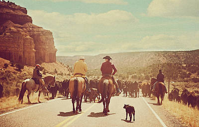 Horses Photograph - Cattle Call by Carolyn Rauh
