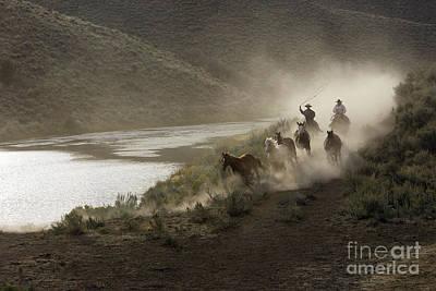 Working Cowboy Photograph - Cattlemen Herding Quarter Or Paint by M. Watson