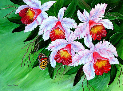 Painting - Cattleya Orchid by Fram Cama