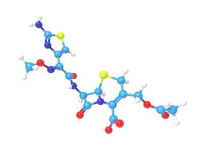 Cefotaxime Molecule Art Print by Indigo Molecular Images