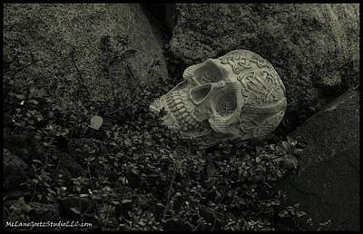Celtic Photograph - Celtic Skulls Symbolic Pathway To The Other World by LeeAnn McLaneGoetz McLaneGoetzStudioLLCcom