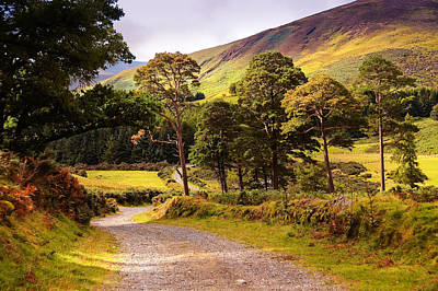Photograph - Celtic Spirit. Wicklow  Mountains. Ireland by Jenny Rainbow