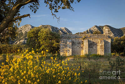 Photograph - Chapelle De Romanin by Brian Jannsen