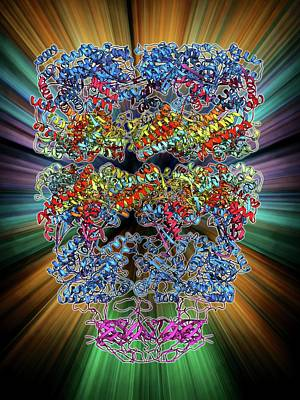Molecular Structure Photograph - Chaperonin Protein Complex by Laguna Design