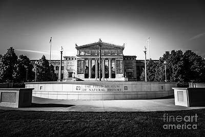 Building Exterior Photograph - Chicago Field Museum In Black And White  by Paul Velgos