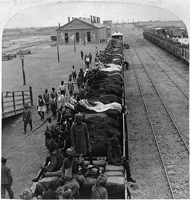 Boxer Rebellion Photograph - China Tientsin, C1901 by Granger