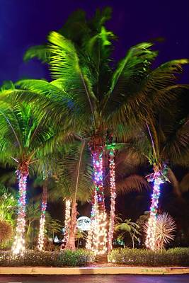 Photograph - Christmas Palms by R B Harper