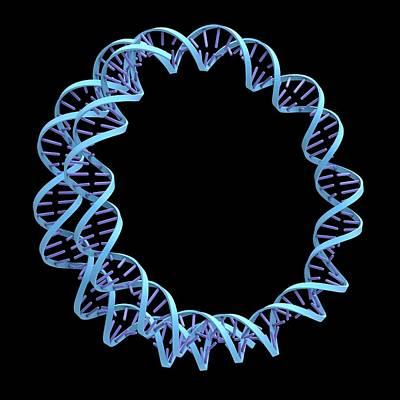 Circular Dna Molecule Art Print