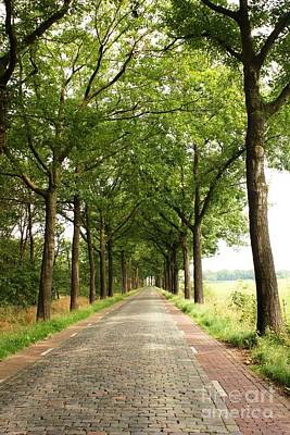 Photograph - Cobblestone Country Road by Carol Groenen