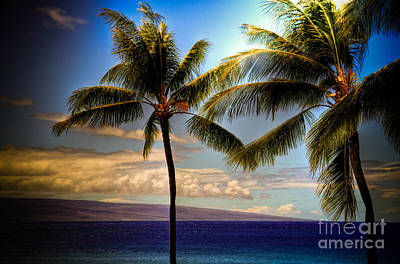 Kaanapali Beach Photograph - Coconut Palms by Kelly Wade