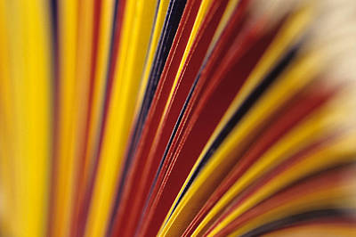 Photograph - Abstract Colorful File Folders by Jim Corwin