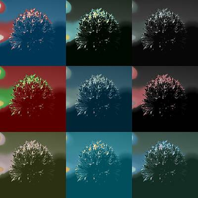Colorful Flowers Original