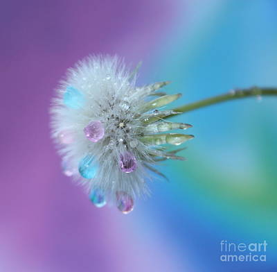 Fantasy Flower Photograph - Come True by Krissy Katsimbras