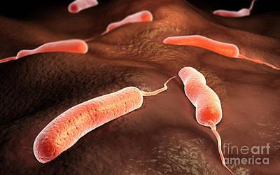 Focus On Foreground Digital Art - Conceptual Image Of Vibrio Cholerae by Stocktrek Images