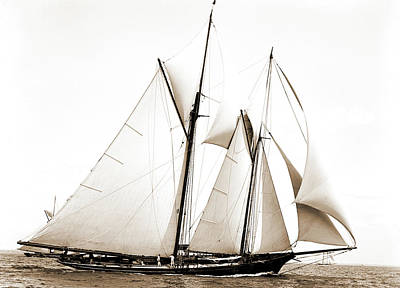 Constellation Drawing - Constellation, Constellation Schooner, Yachts by Litz Collection