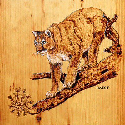 Pyrography - Cougar by Ron Haist