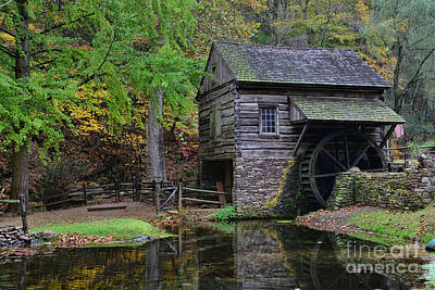 Country Mill And Pond Art Print