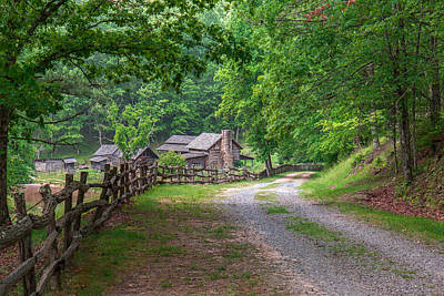 Photograph - Country Road by Mary Almond