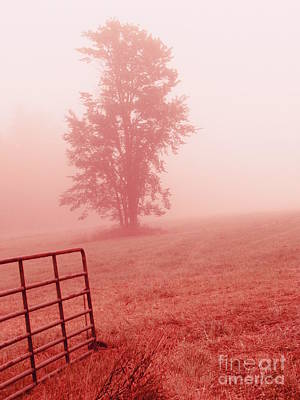 Photograph - Country Side by France Laliberte
