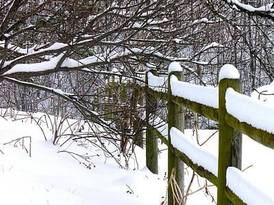 Country Winter Art Print by Deena Stoddard